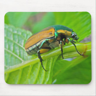 Green June Beetle Mousepad