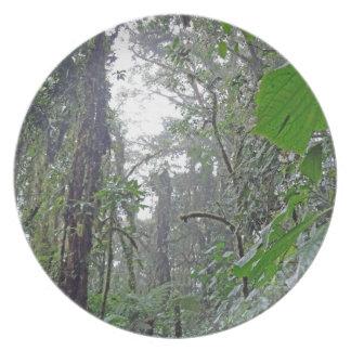 green jungle in costa rica party plate