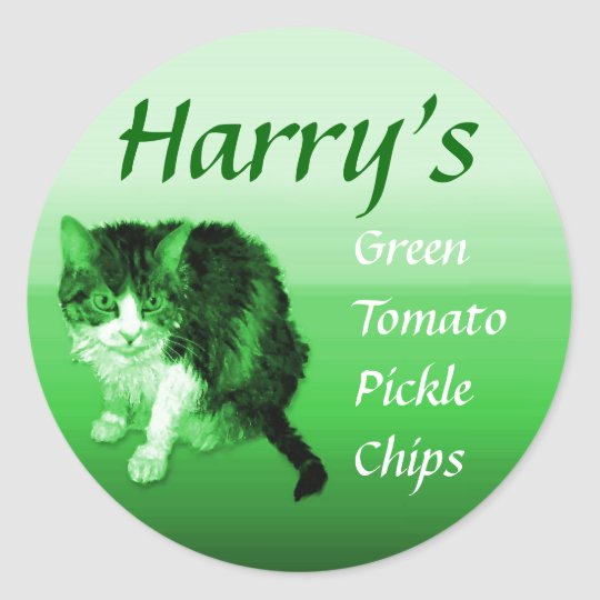 Green Kitty Personalized Classic Round Sticker