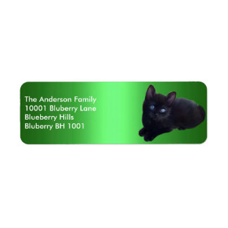 Green Label Return Address Black Cat Custom Return Address Label