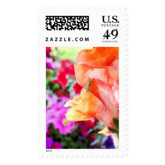 Green Lacewing First Class US Postage Stamps