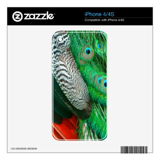 Green Lagoon Feathers Decal For The iPhone 4S