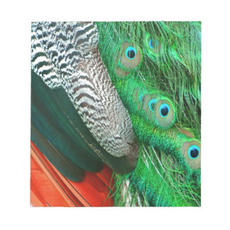Green Lagoon Feathers Notepad