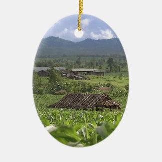 Green Landscape photography Yunnan Province China Ceramic Ornament