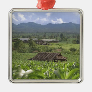 Green Landscape photography Yunnan Province China Metal Ornament