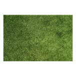 Green Lawn Poster