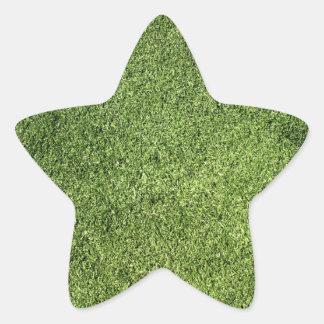 Green Lawn Star Sticker