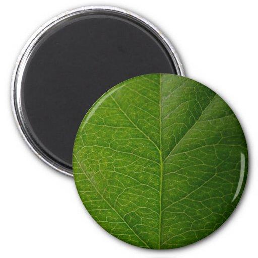 Green Leaf 2 Inch Round Magnet
