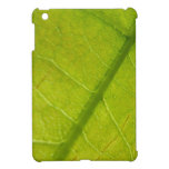 Green Leaf Abstract Nature Photography iPad Mini Cover