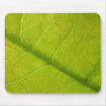Green Leaf Abstract Nature Photography Mouse Pad