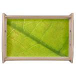 Green Leaf Abstract Nature Photography Service Tray
