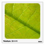 Green Leaf Abstract Nature Photography Wall Sticker