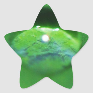 Green Leaf And Water Drop Star Sticker