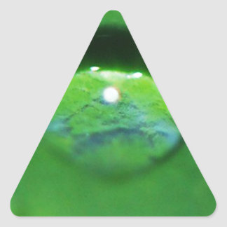 Green Leaf And Water Drop Triangle Sticker