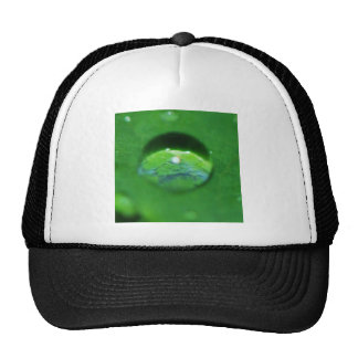 Green Leaf And Water Drop Trucker Hat