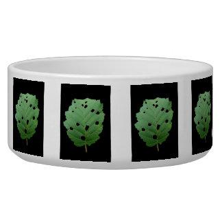 Green Leaf Black Background Bowl