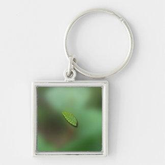 Green Leaf Blurred Background; No Greeting Keychain