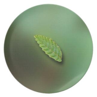 Green Leaf Blurred Background; No Greeting Melamine Plate