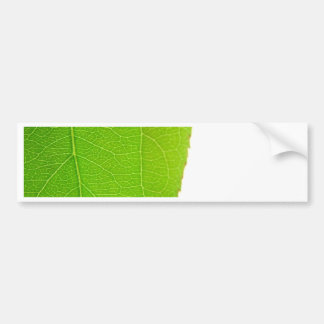 Green Leaf Bumper Sticker