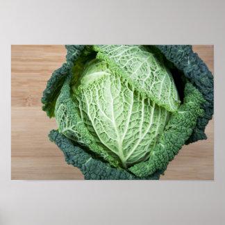 Green Leaf Cabbage Poster