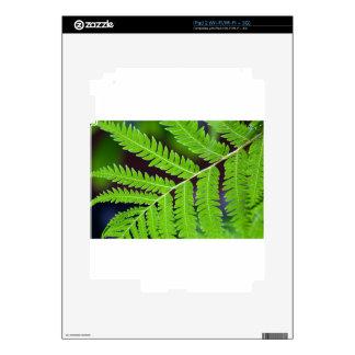 Green Leaf Closeup Decals For iPad 2