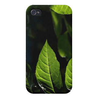 Green leaf cover for iPhone 4