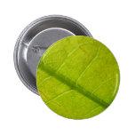 Green Leaf Design Button