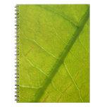 Green Leaf Design Notebook