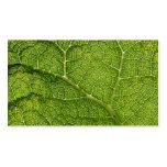 Green Leaf. Digital Art. Business Card Templates