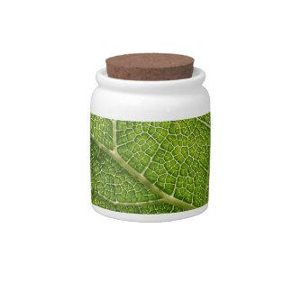 Green Leaf Digital Art Candy Jar