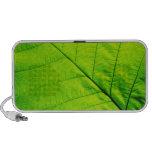 Green Leaf Doodle Speakers