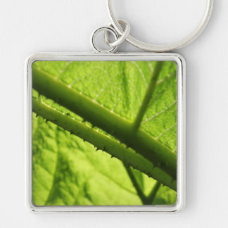 Green Leaf, focused on spiny center. Key Chains