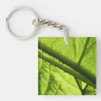 Green Leaf, focused on spiny center. Single-Sided Square Acrylic Keychain