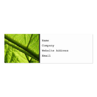 Green Leaf, focused on spiny center. Mini Business Card