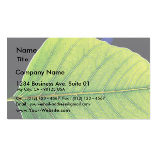 Green Leaf Leaves Business Card Templates
