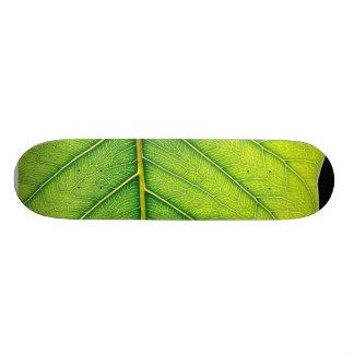 Green Leaf Leaves Skate Boards