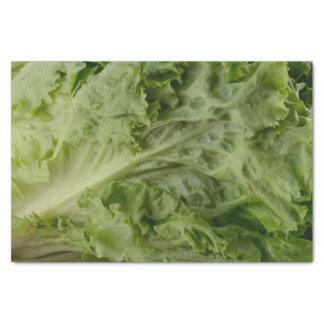 Green leaf lettuce tissue paper