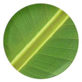 Green Leaf Macro Party Plates