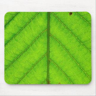 Green Leaf Mouse Pad