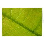 Green Leaf Nature Card