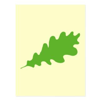 Green Leaf, Oak Tree leaf Design. Postcard