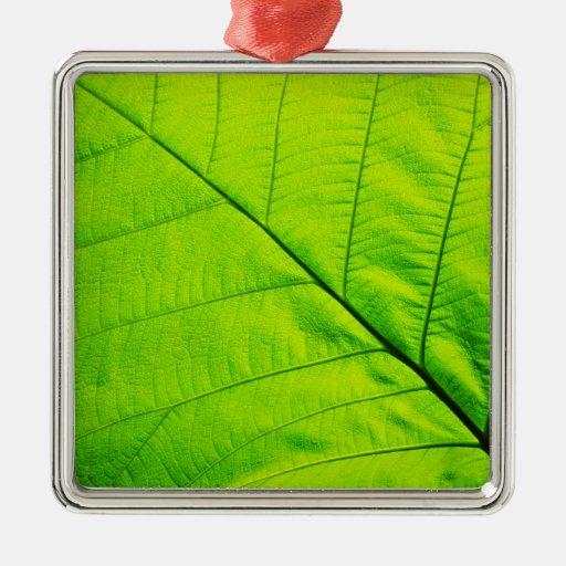 Green leaf Ornaments