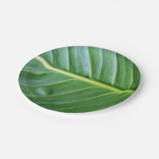 Green Leaf Paper Plate