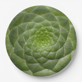 green leaf pattern spiral design paper plate