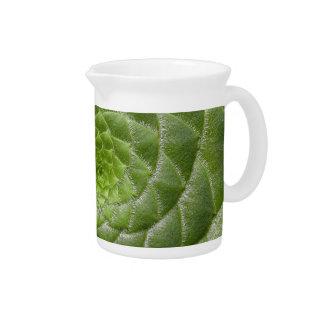 green leaf pattern spiral design pitchers