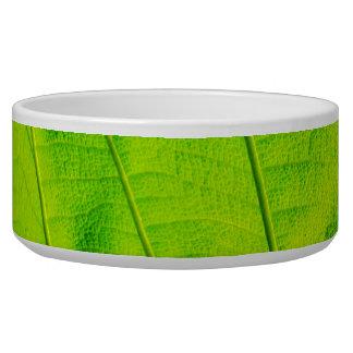 Green Leaf Pet Bowl