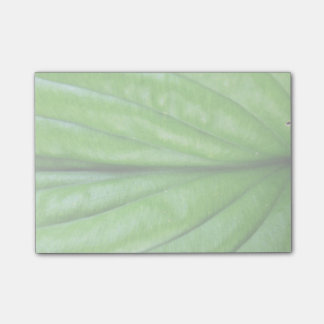 Green Leaf Post-it Notes