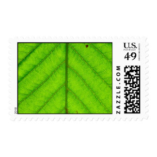 Green Leaf Postage Stamp
