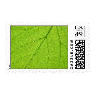 Green leaf postage stamps