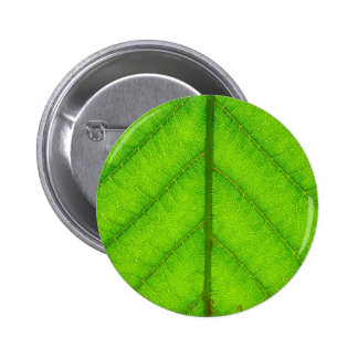 Green Leaf Round Button